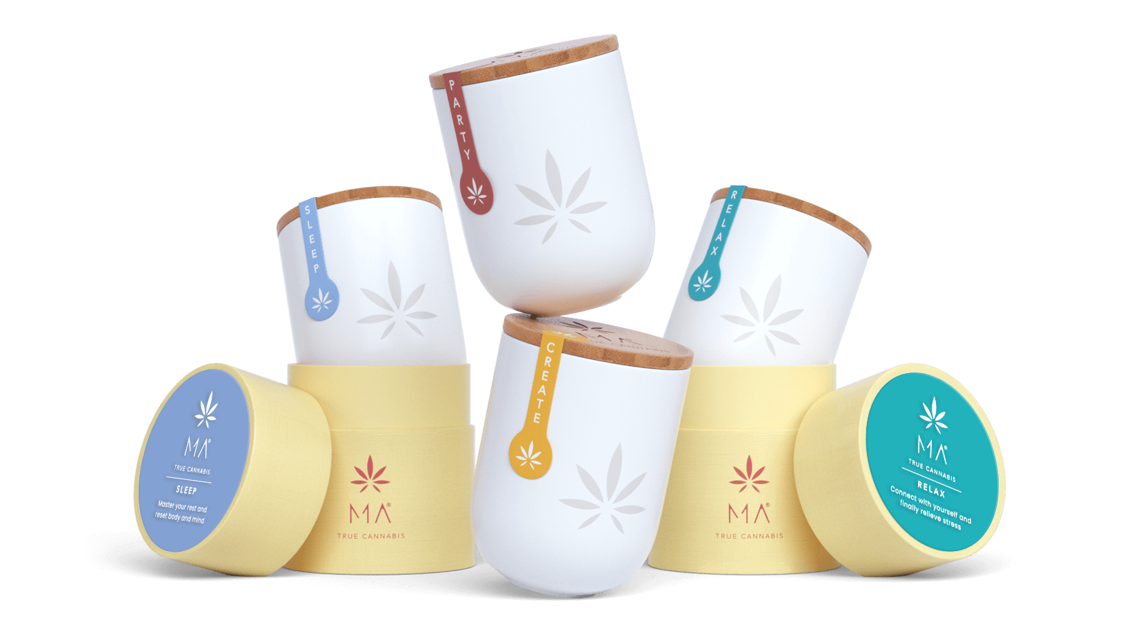 Cannabis Jar & Box for Flowers and Joints | MA True Cannabis