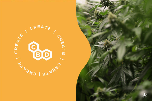 What is CBD? The cannabidiol of Legal Weed