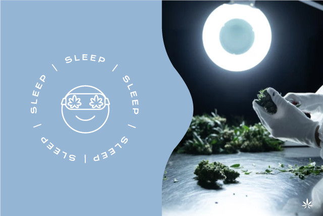 CBD improves sleep quality and reduces anxiety